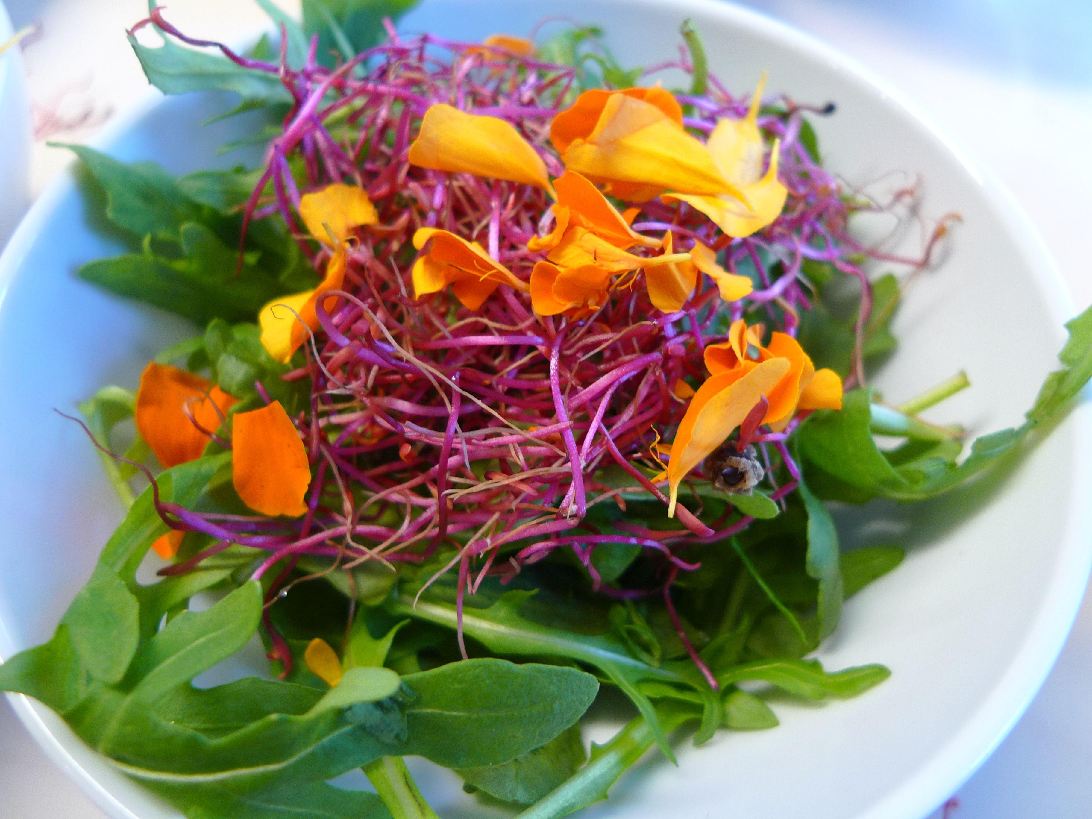 salade met oranje accenten